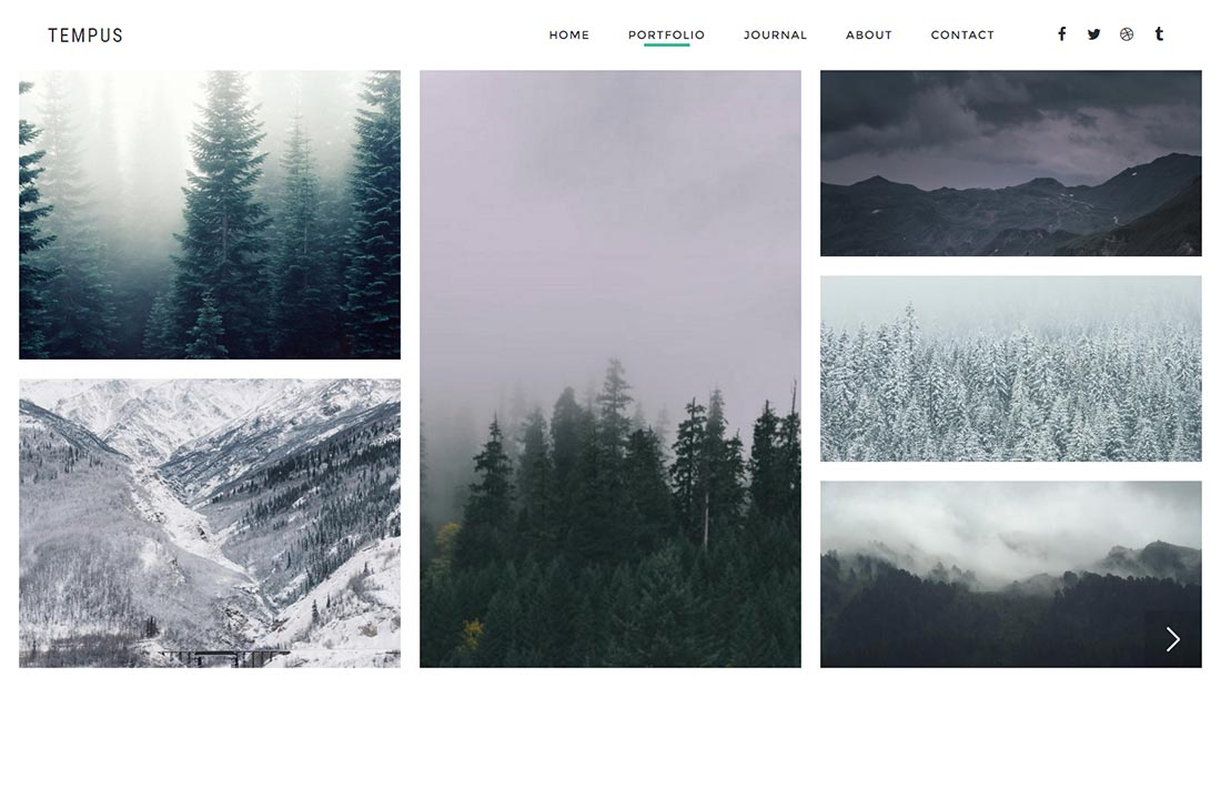 Tempus - Photography WordPress Theme - 3